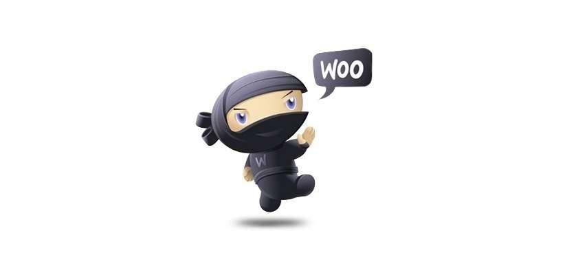 Почему WooCommerce это лучшее решение для интернет-магазина