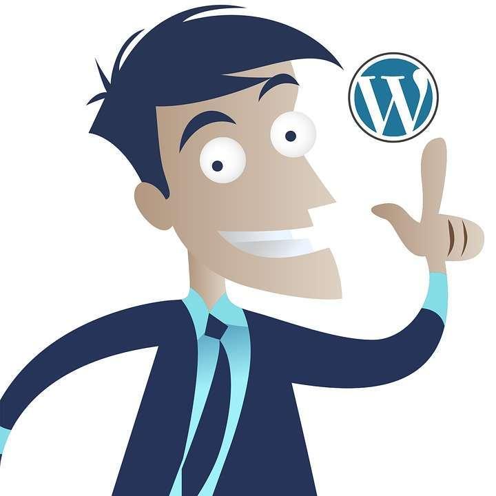 использовать WordPress для любых целей примеры 2017 01