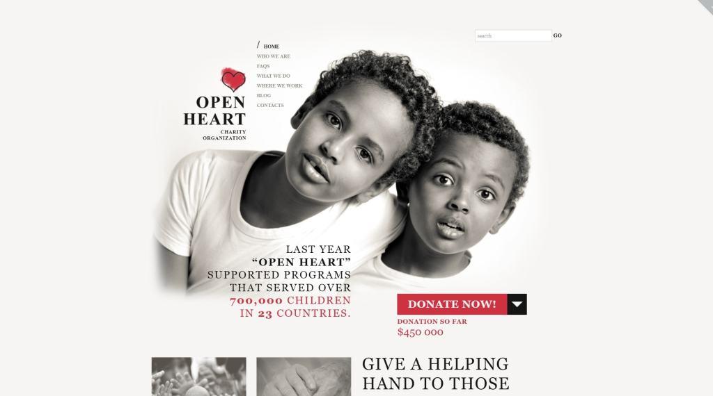 WordPress темы для некоммерческих организаций и благотворительности 01