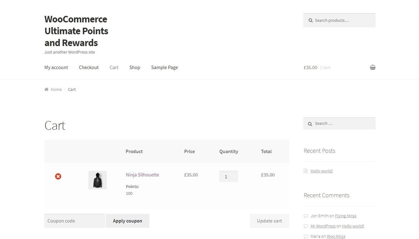 программа лояльности WooCommerce: сделайте свой магазин успешным 4