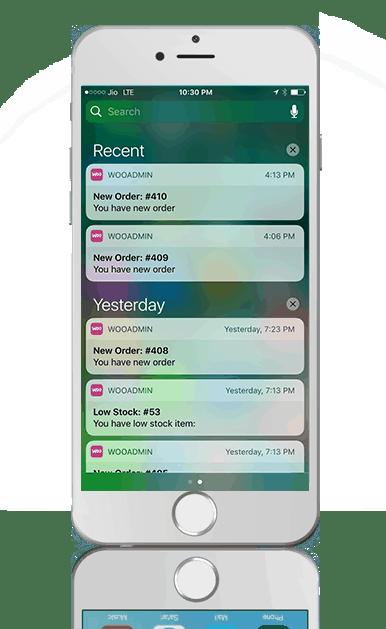 WooCommerce уведомления: push, SMS и уведомления в браузере 3