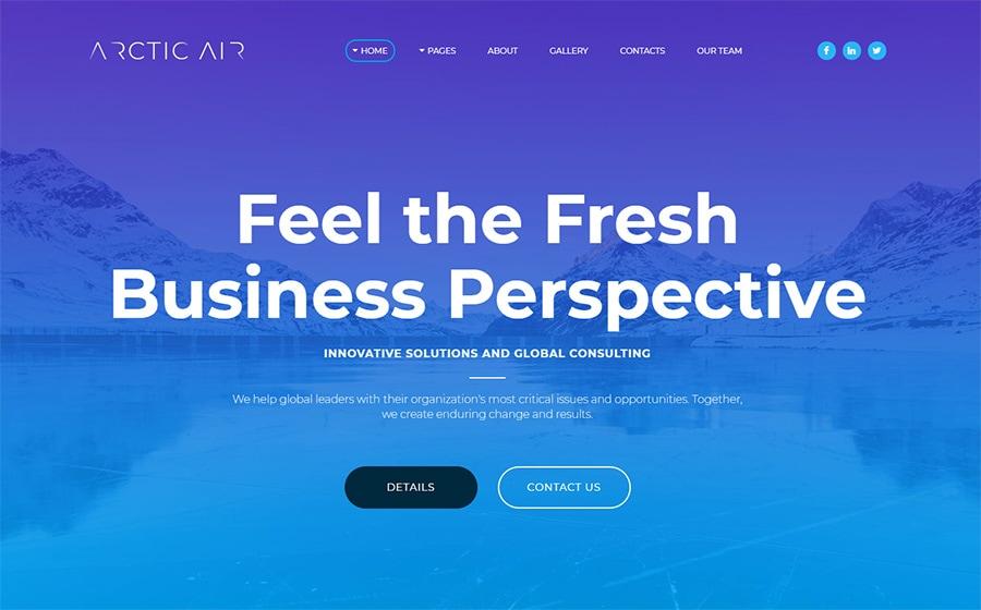 MotoCMS 3 шаблон Arctic - Business Startup