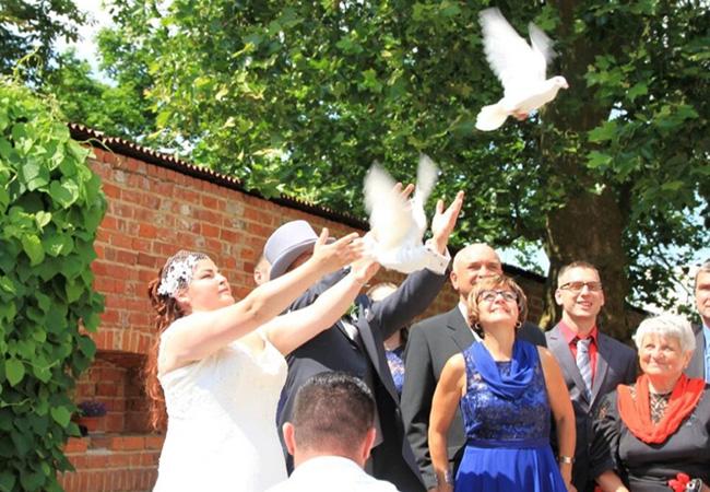 Hochzeitstauben in Berlin und Brandenburg von Christian Dewerzeny