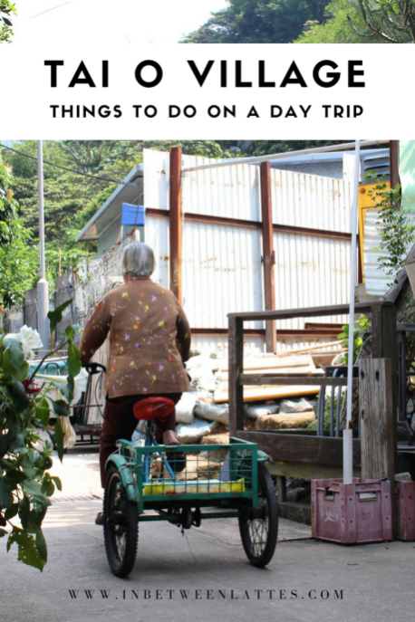 A Day at Tai O Fishing Village Hong Kong - In between Lattes