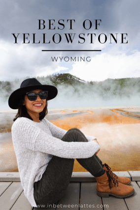 BEST OF YELLOWSTONE - IN BETWEEN LATTES
