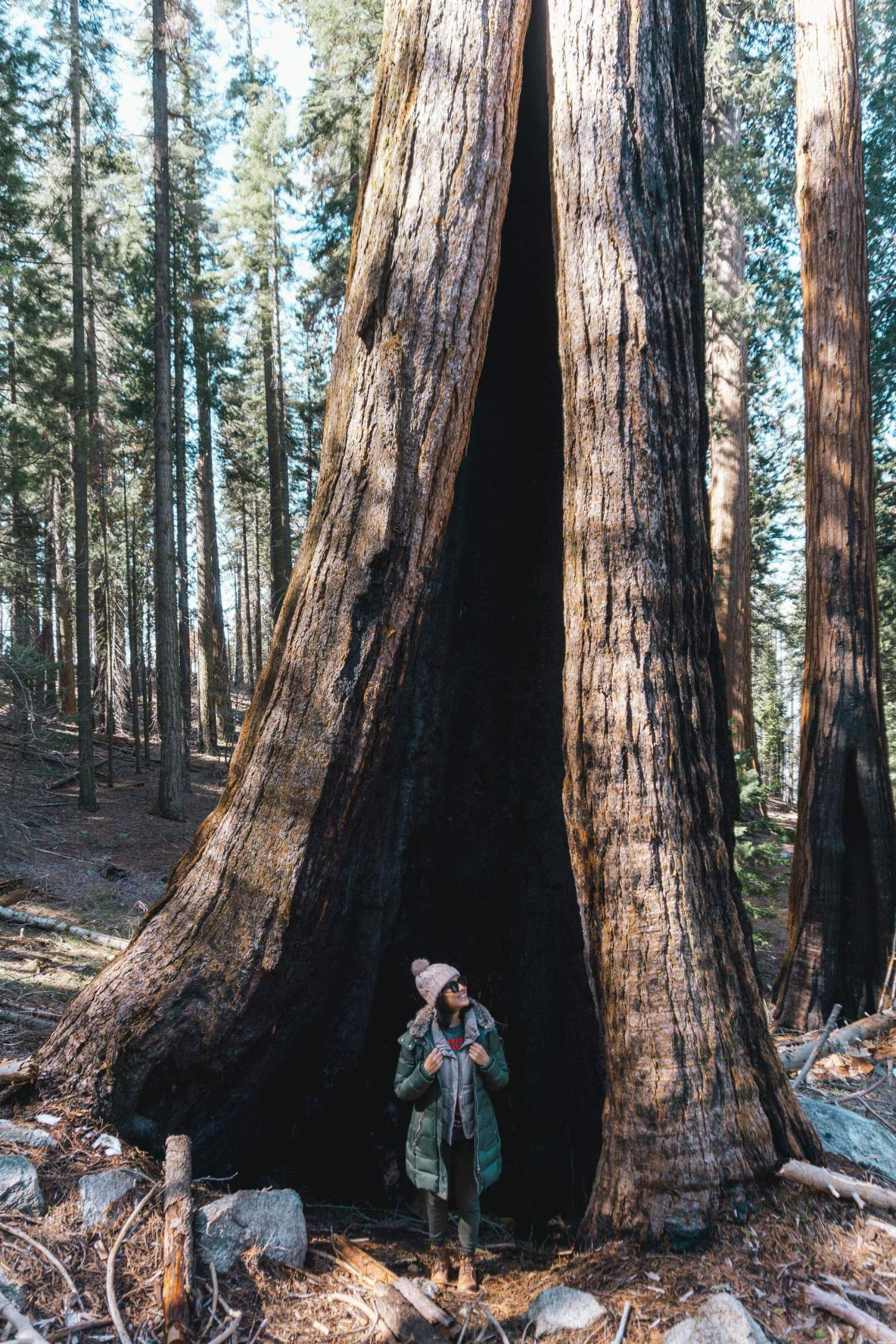 How to spend a weekend in Sequoia National Park