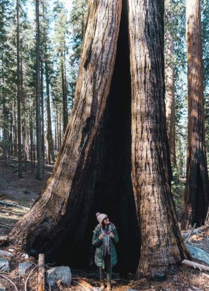 How to spend a weekend in Sequoia National Park_1