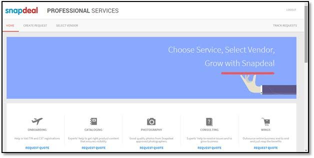 snapdeal professional services