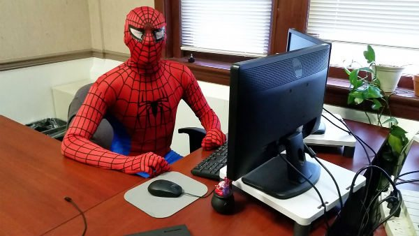 A person in a Spiderman Costume sits behind a computer in an office setting.