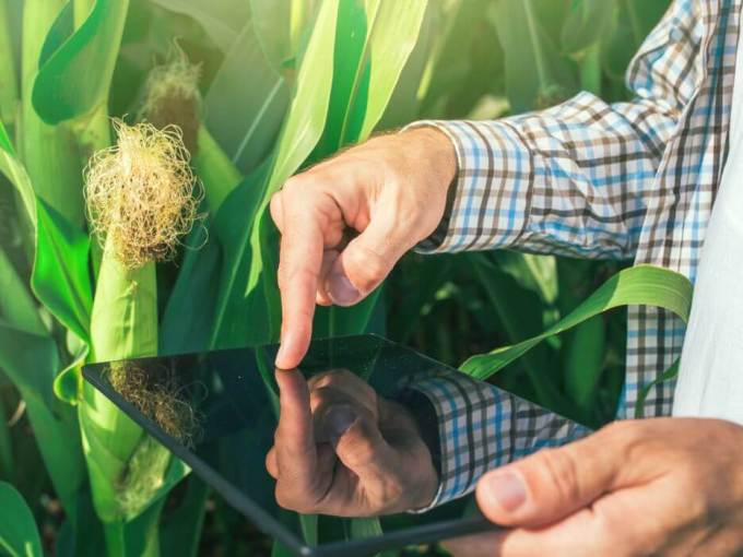 Agricx Lab, an agritech startup that uses smartphone imaging to assess the quality of agricultural produce, has raised Seed funding to the tune of $500K led by India-focussed VC fund Ankur Capital.