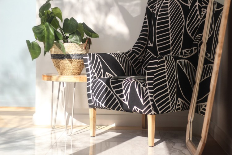 executive-chair-indoor-plant