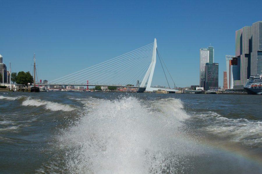 uitzicht Erasmusbrug vanaf watertaxi