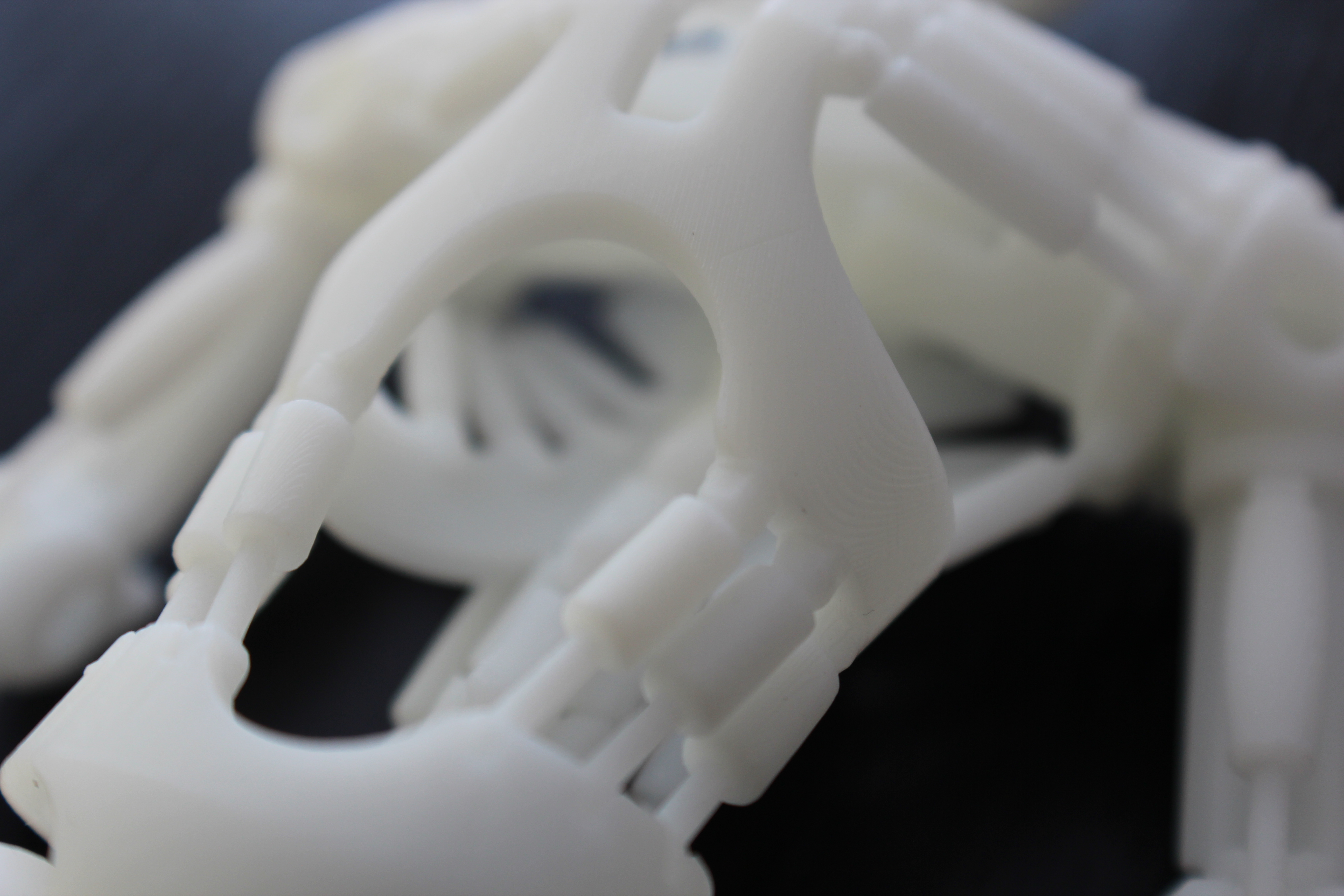 3D printed Robot Detailed Stomacch