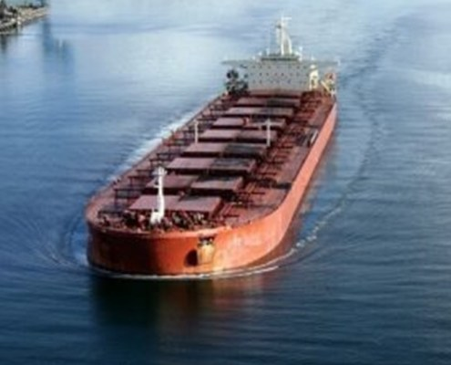 The image shows a cargo ship in navigation to represent the transport of the non-liquid goods that are represented by the index object of the argument and that is the Baltic Dry Index that records the trend of the costs related to the freight of this type of ships.