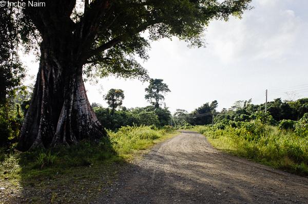Kapitangan, Pulau Banggi, Kudat Sabah