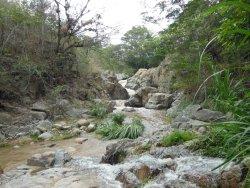 McDouglas' waterfall