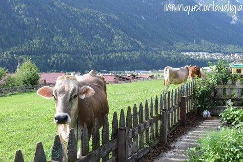 Vacanza in fattoria con bambini