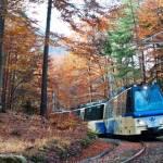 Il treno del foliage: viaggio sulla ferrovia Vigezzina Centovalli