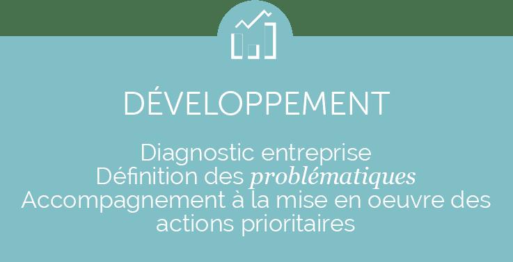 Développement-entreprise-incituconseil.fr
