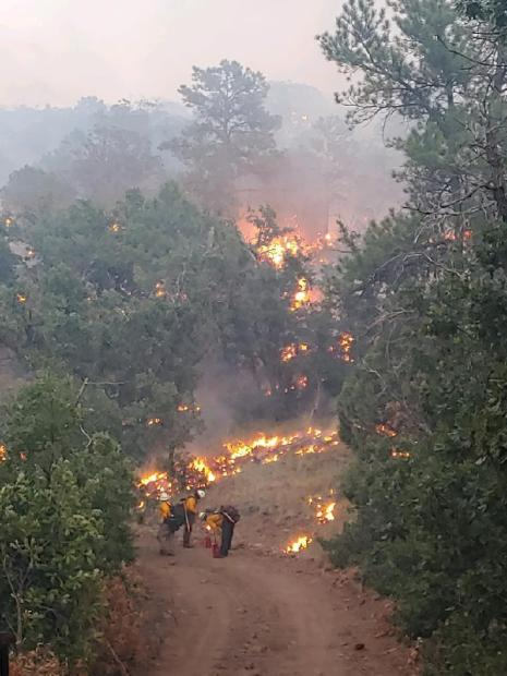 Three firefighters use drip torches to ignite vegetation along a dirt road.