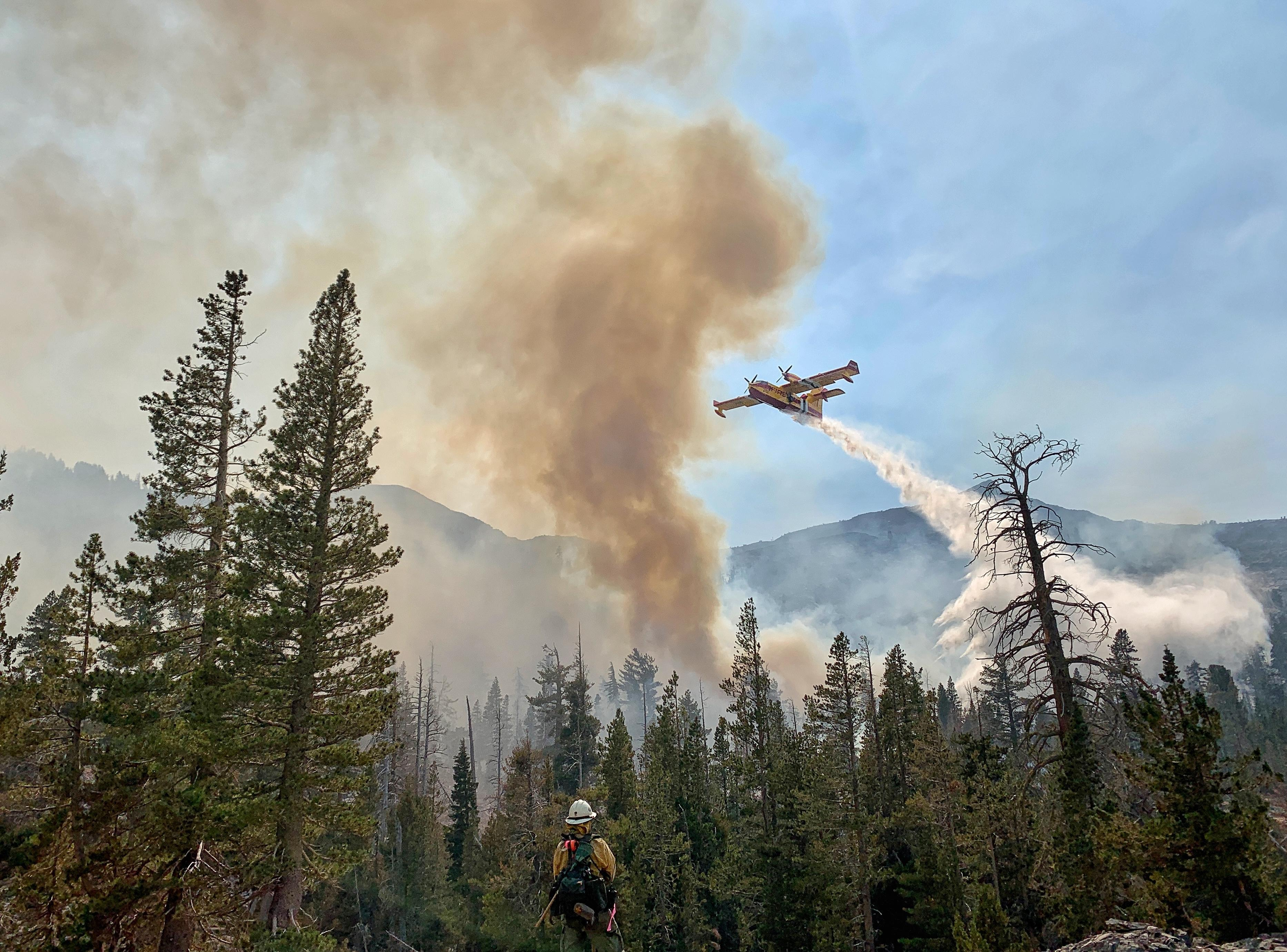 A large airplane flies overhead and drops water while a firefighter looks on from the ground.