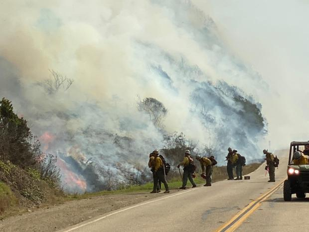 A group of firefighters on a road next to a slope covered in flames and smoke.