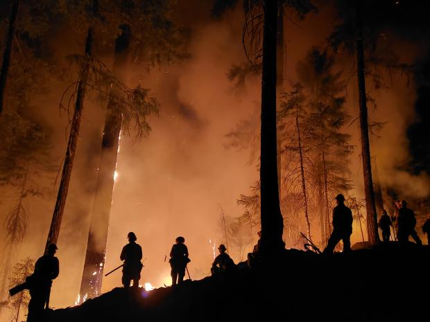 Firefighters with orange glow on the horizon. Photo Credit: Tiana Huddlestun/USFS