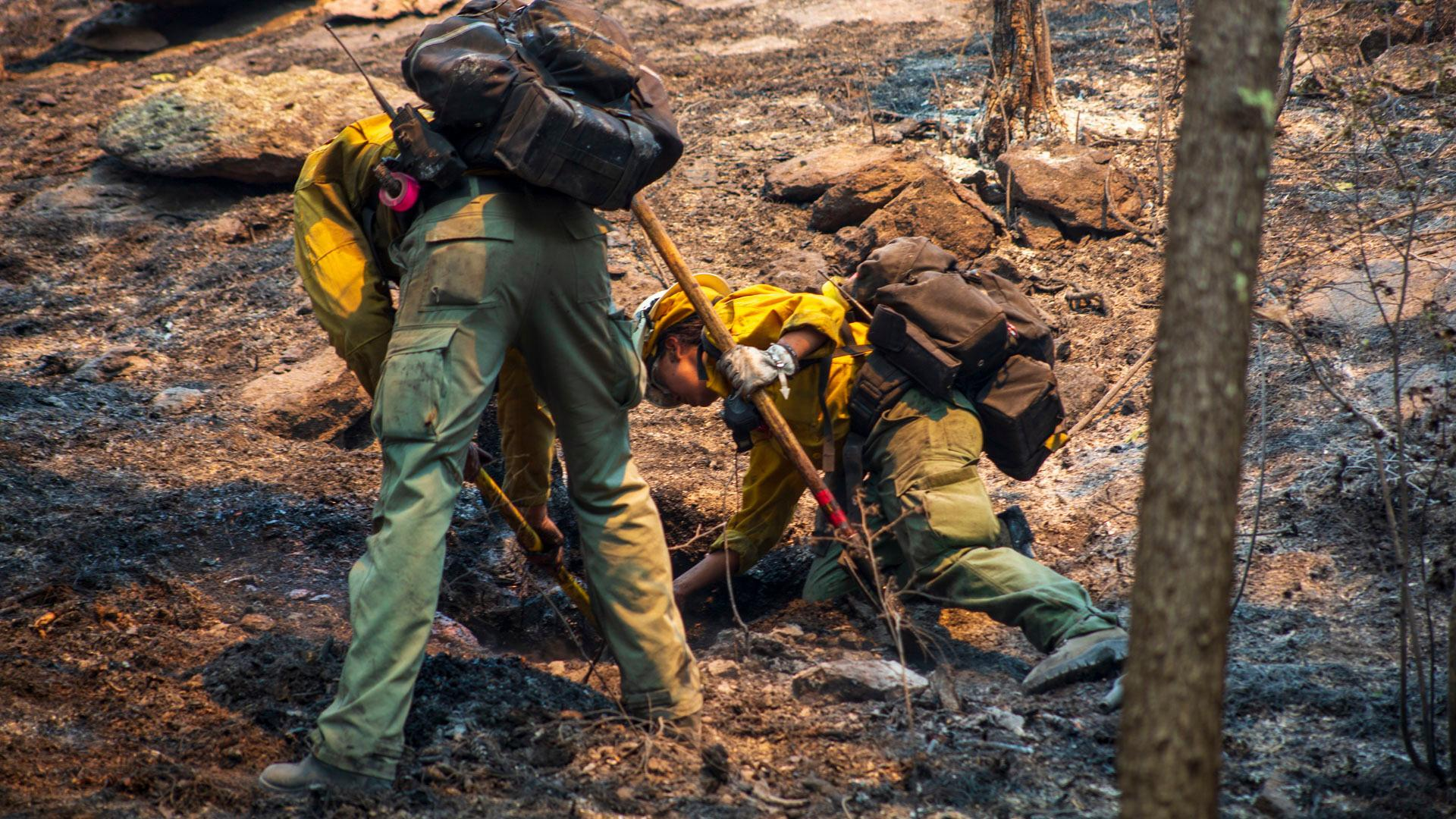 Image of Wildland Fire crews working on the Tadpole Fire June 20, 2020