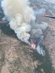 Image taken of the Black Butte Fire from Air Resources.