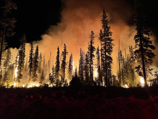 Night time burning operations on Lick Creek Fire.