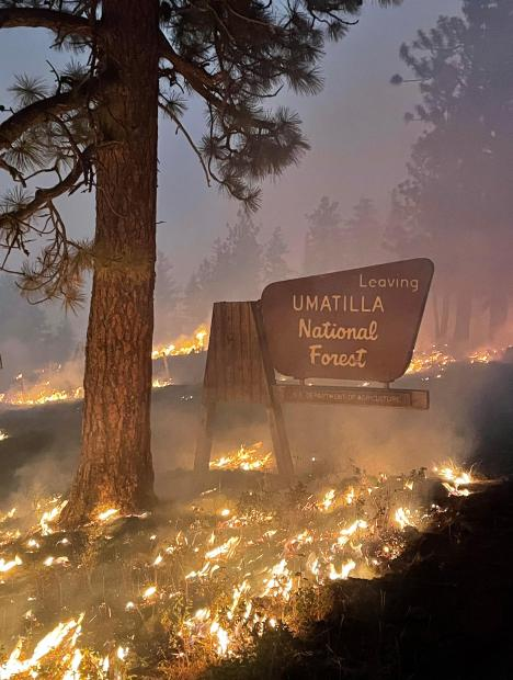 US Forest Service sign on the Umatilla NF surrounded by a controlled burn.