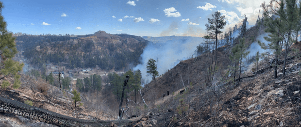 A few green pines stand on a burned hillside. Smoke rises behind the hill, and homes are visible in a canyon below.