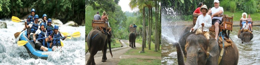 Bali Ayung Rafting and Elephant Ride Tour