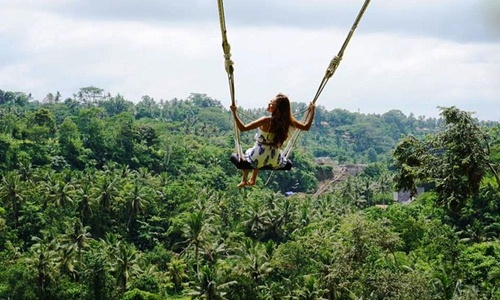Bali swing and Ubud Village Tour
