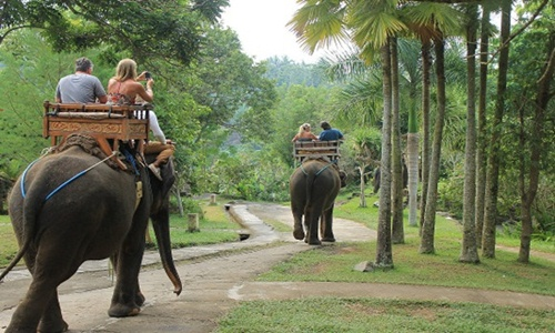 Bali Elephant Ride and ATV Adventure Tour
