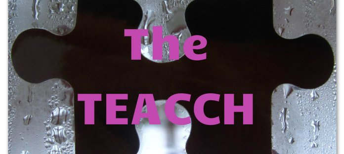 TEACCH Special education blog featured images