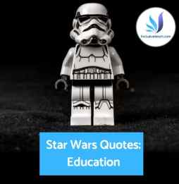 Lego Stormtrooper Education quotes