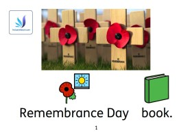 remembrance day book SEN.jpg