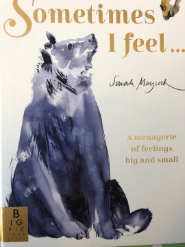 Sometimes I feel book cover emotions childrens book