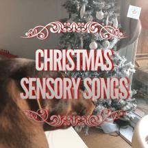 Christmas sensory story song