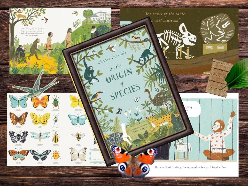 Charles Darwin origin of the species children's illustrated book