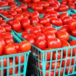 How To Start Tomato Farming In Nigeria