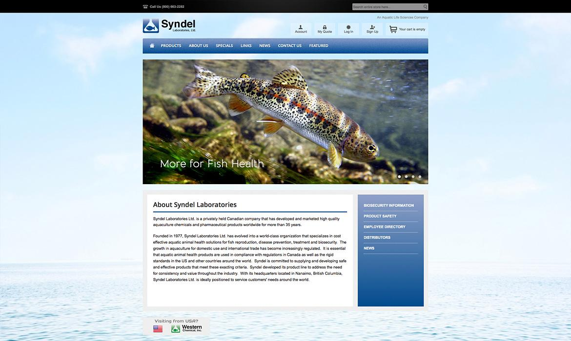 Syndel Home Page