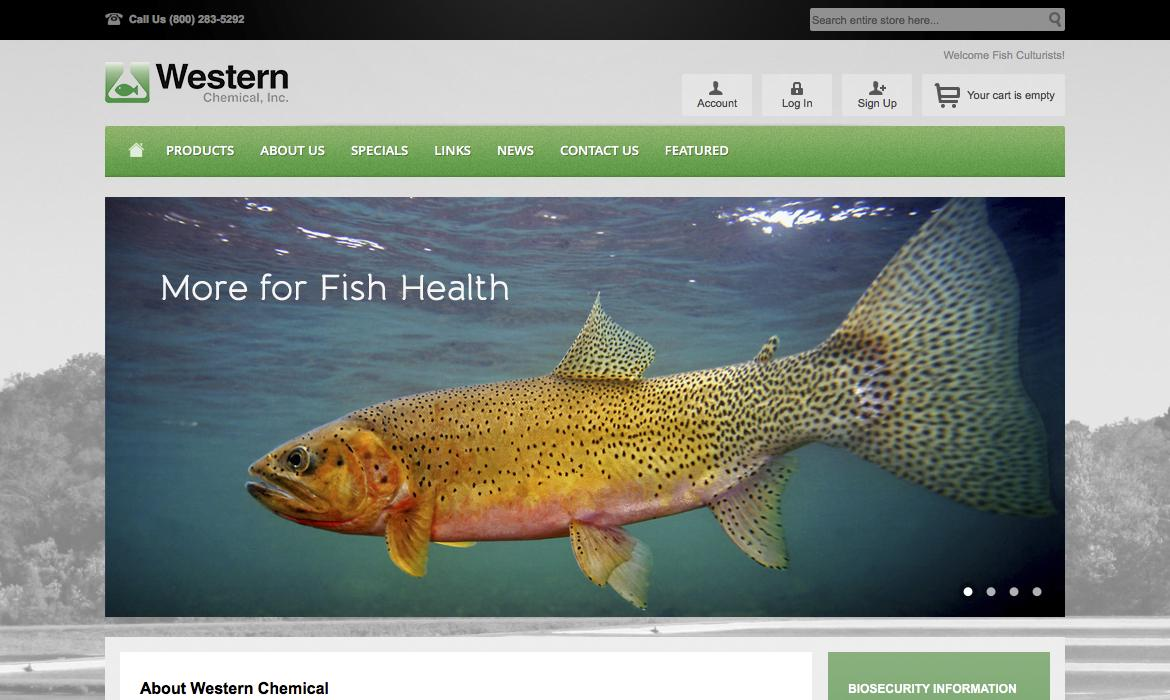 Western Chemical Home Page Close Up
