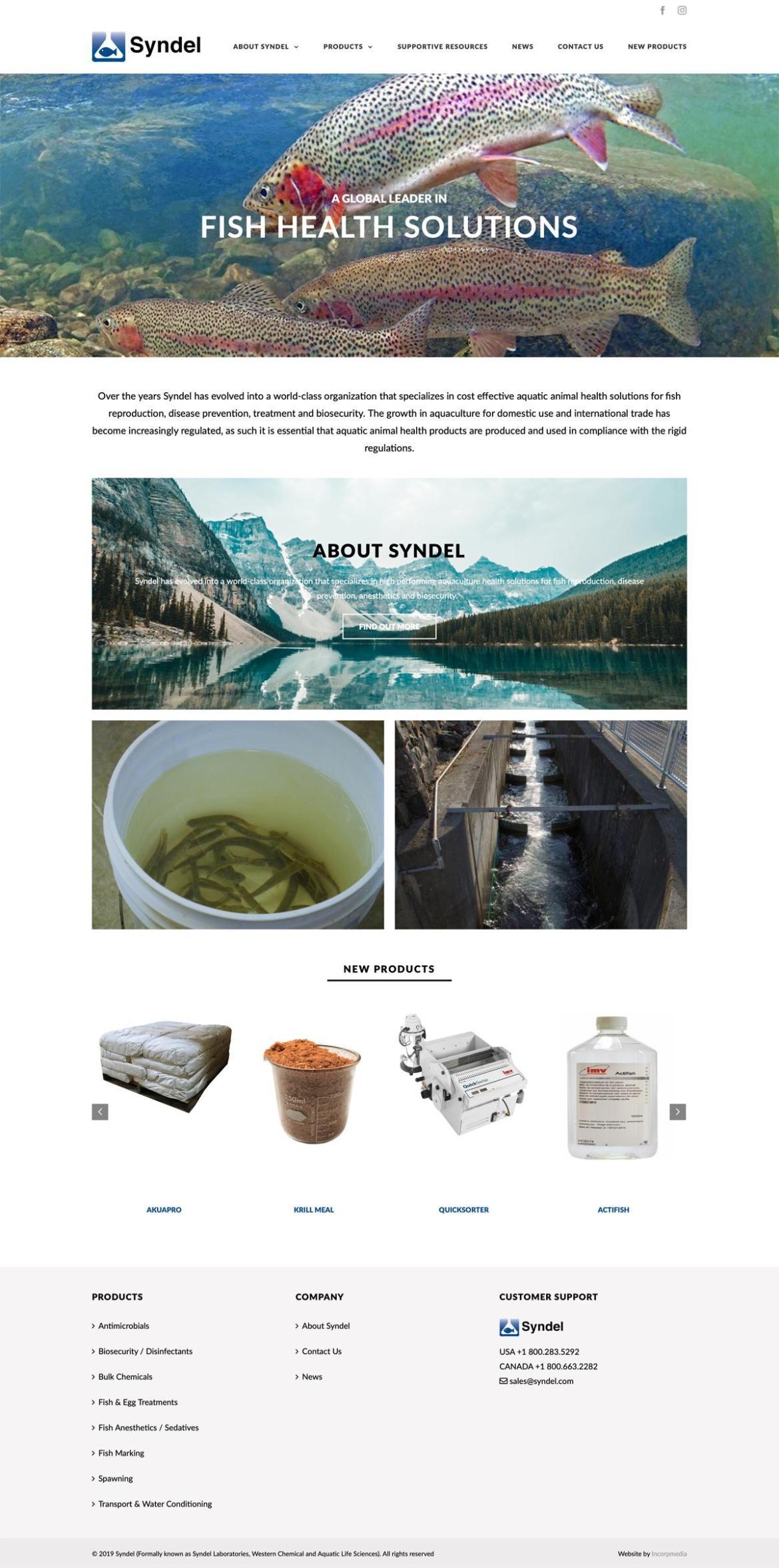 Syndel Web Design Home Page