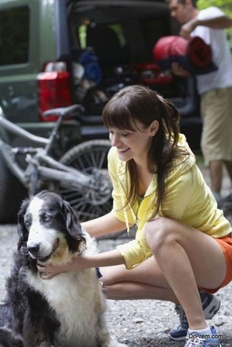 activities of dog
