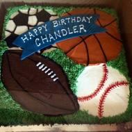 #427- Sports cake