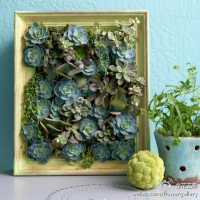 Gardening Craft: Creative Planter Board