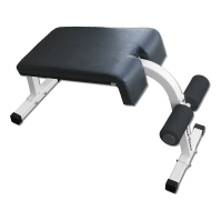 Deltech Fitness Roman Chair / Sit Up Bench [DF408 ...