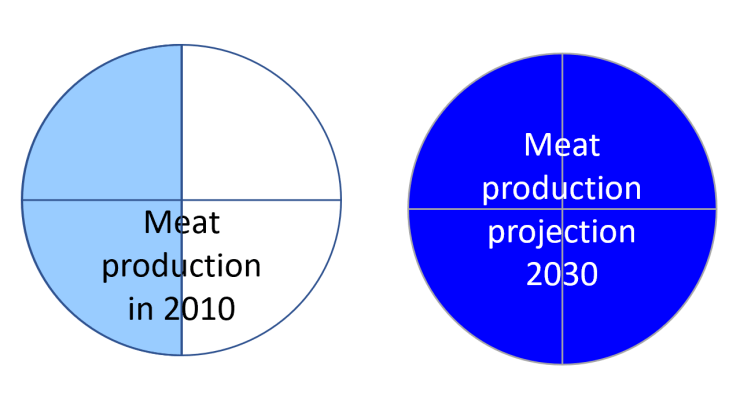 meat production past and future, food, agriculture, climate change, hunger, trends
